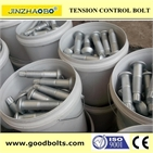 High Strength TC Bolt  A490